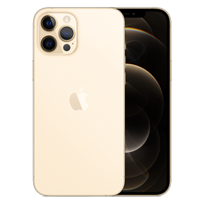 Picture of Apple iPhone 12 Pro Max 256GB Gold (MGDE3B)